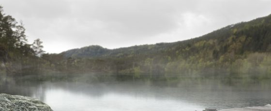 Swedish calmness